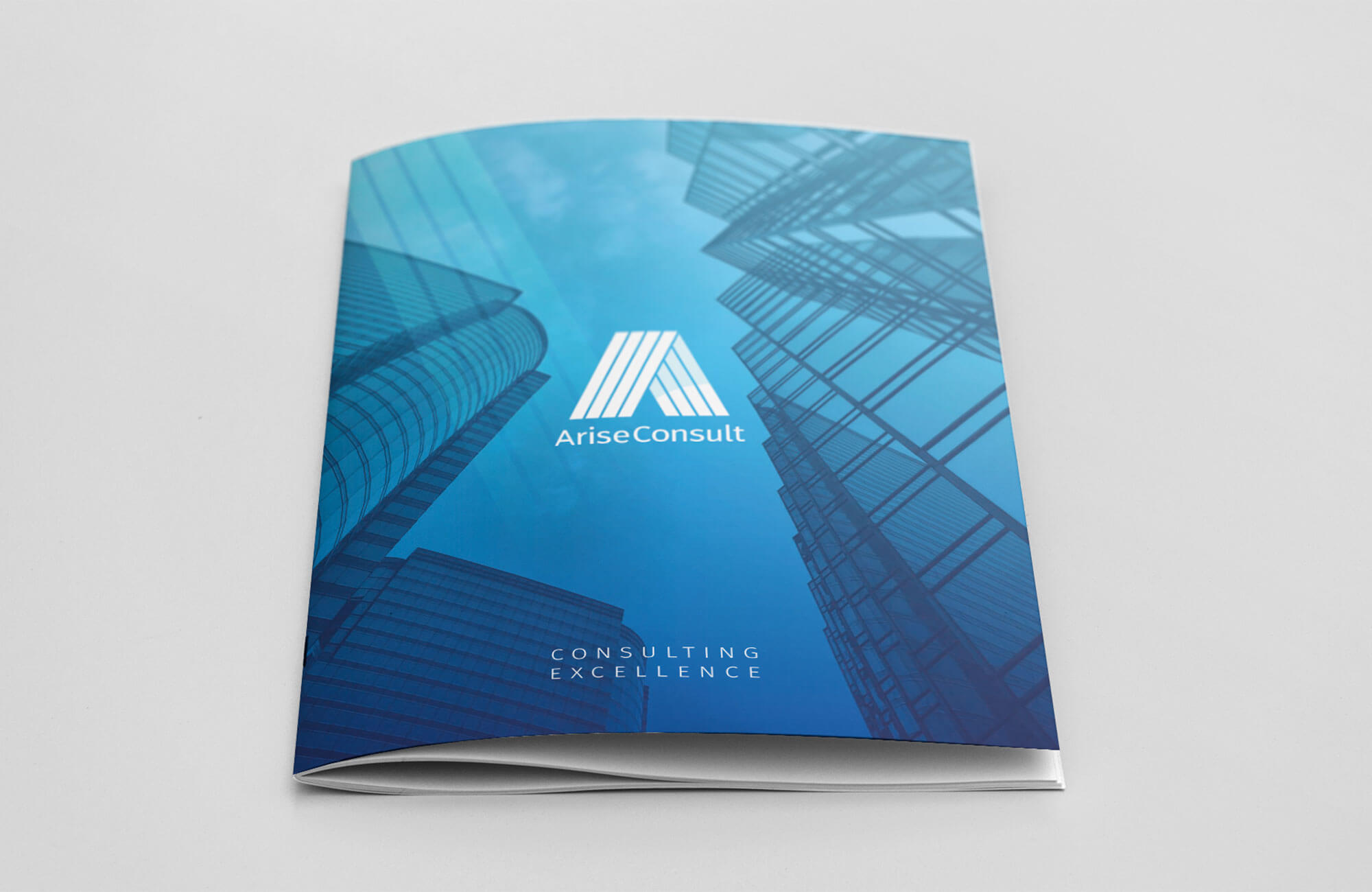 Arise Consult Brochure Design and Printing