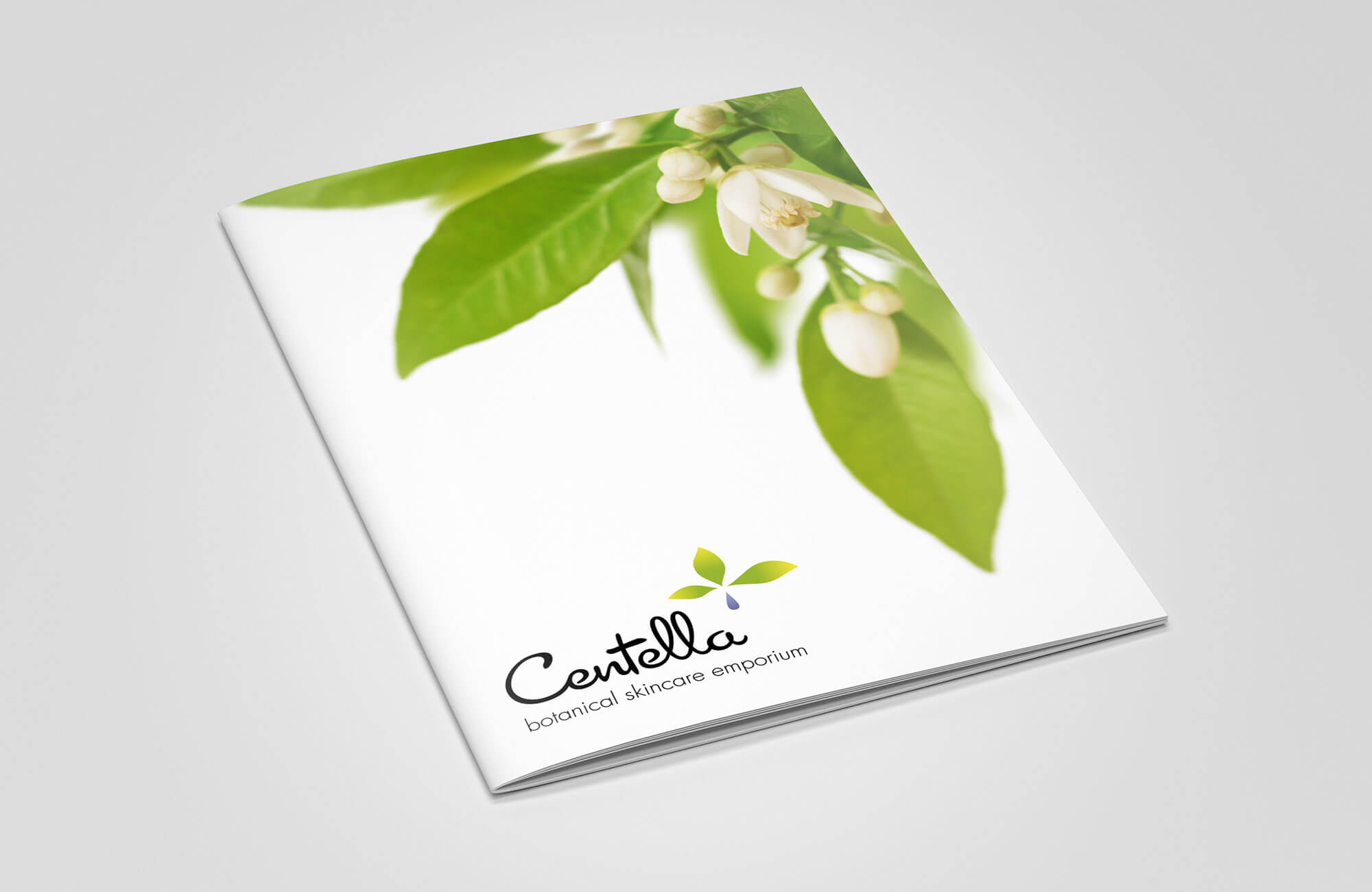 Centella Brochure Cover Design
